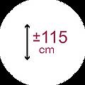 Deskans-Icona-Alçada-171 còpia.png