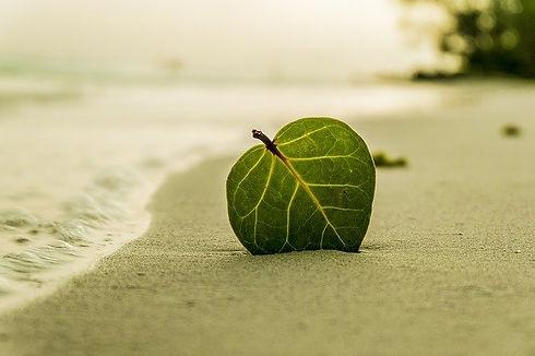 leren ontspannen mindfulness training am