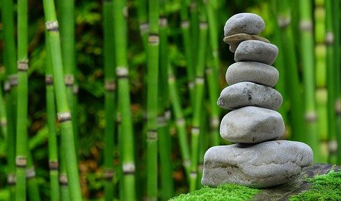leren mediteren mindfulness training ams