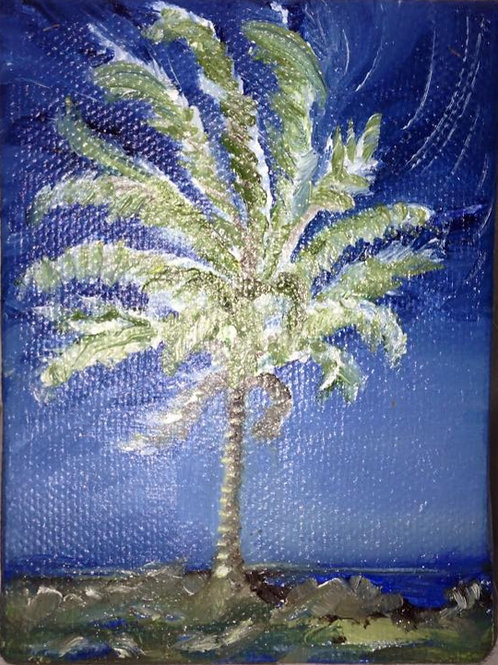 "Cabo Palm 8 4x5"" original oil painting"