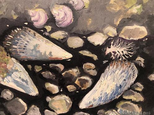 """Shelter Cove Beach 8x10"""" original plein air painting"""