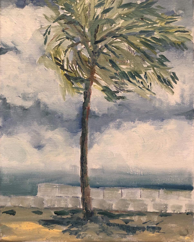 Storm Front Zihuatanejo, MX original plein air oil painting