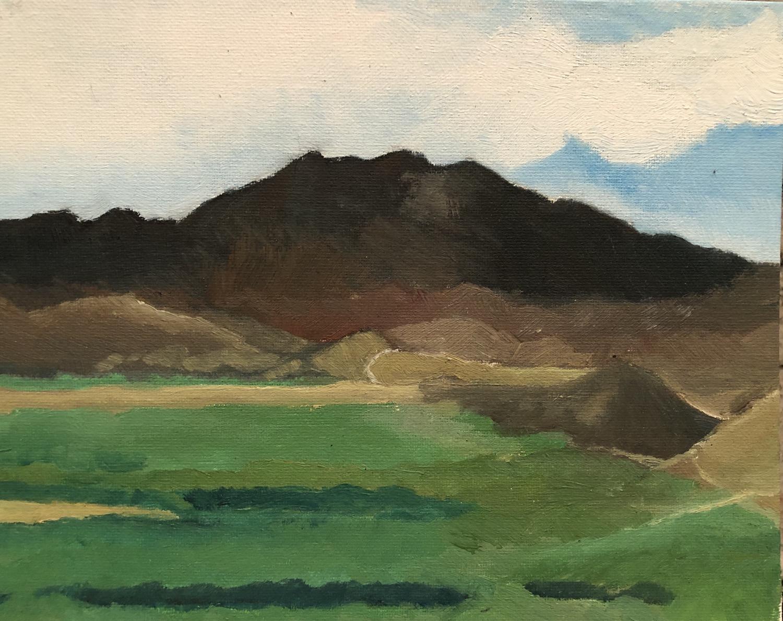 """Buckshot Looking West 8x10"""" original plein air oil painting"""