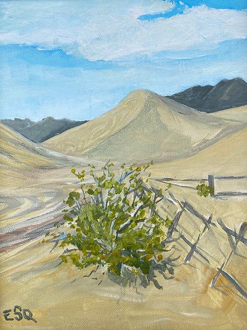 """Amargosa 1. 8x10"""" plein air oil painting"""