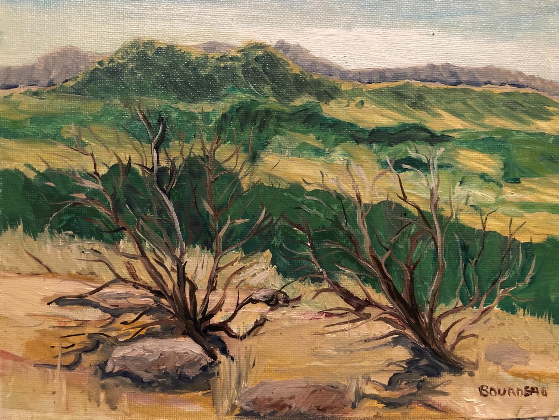"Dueling Brush 8x10"" plein air painting"