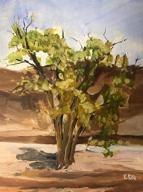 "Tecopa, CA near Delight's 8x10"" original oil painting"