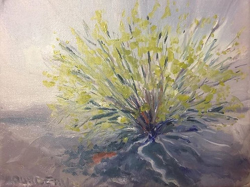 "Desert Brush, Eldorado Valley Summer 8x10"" original oil painting"