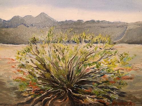 "Sage with Orange 9x12"" original oil painting, plein air"