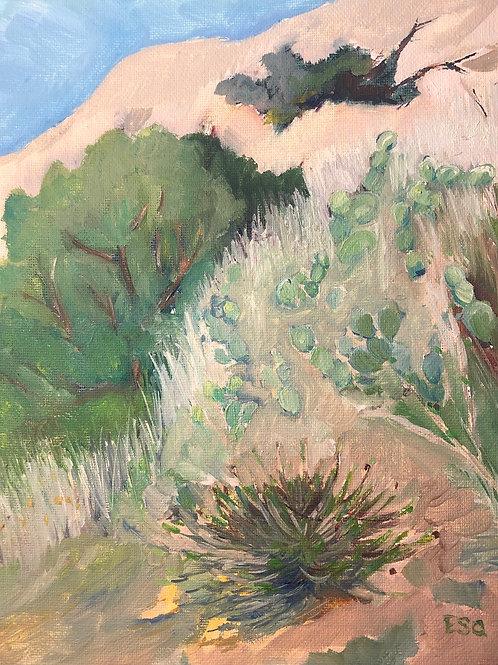 """Serrano Park, Orange, CA 8x10"""" original oil painting"""
