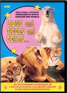 Lions and Tigers and Bears: Wild Animal Wonders