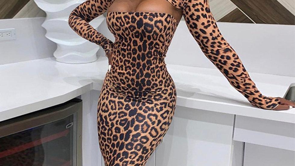 You a Cheetah