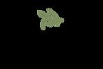 brovelli logo.png