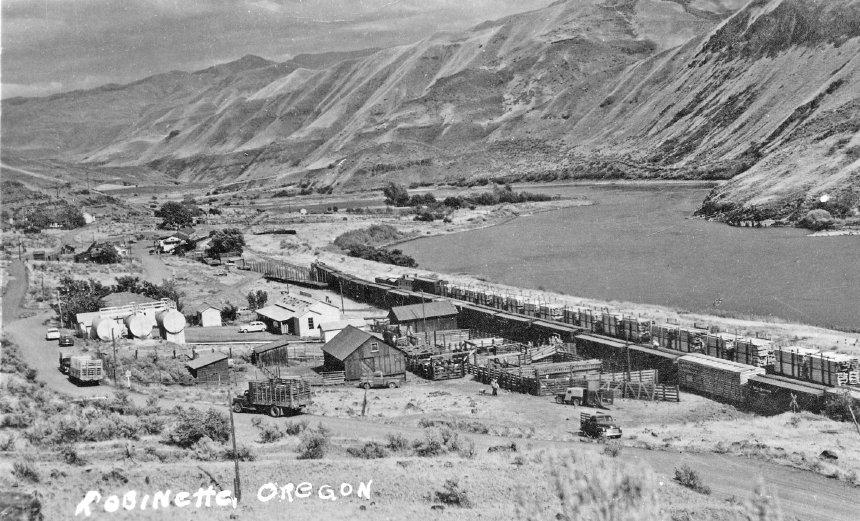 Robinette Stockyard 1940s.jpg