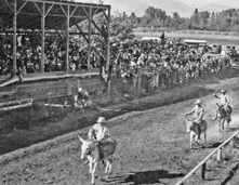Horserace at Old Grandstand.jpg