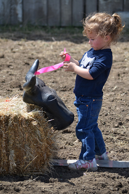Junior Rodeo Roper in Training
