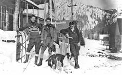 Cornucopia Winter Sleds 1910-20.jpg
