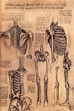 L'Homme Mécanique (Léonard de Vinci)
