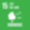 E_SDG-goals_icons-individual-rgb-15.png