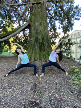 yoga in the park.HEIC