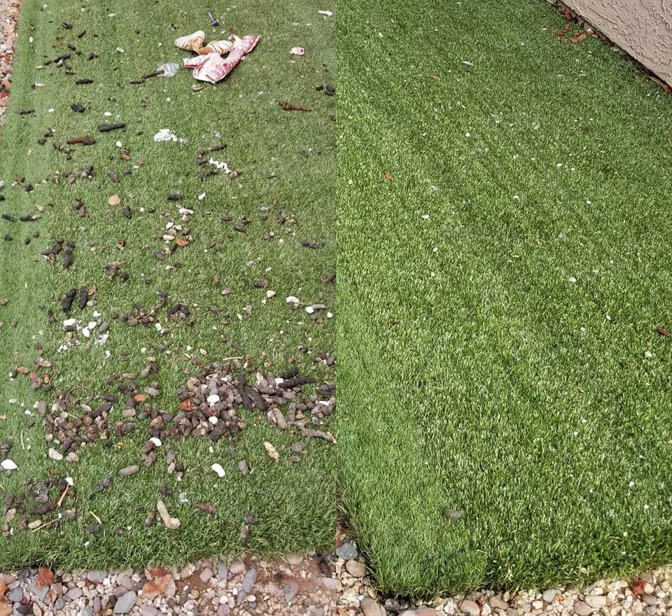 We clean artificial turf...and deodorize too!!