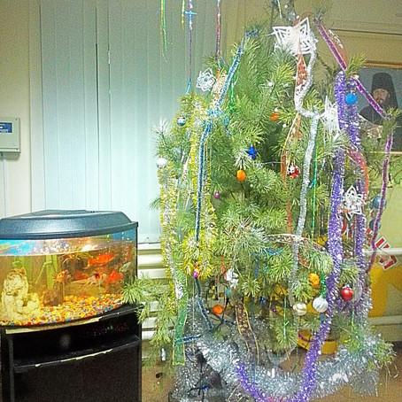 Поздравление с Рождеством Христовым подопечных детского православного приюта в станице Манычская