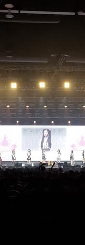 "Lovelyz ""Lovelyz 3 of Winter World"" 亞洲巡迴演唱會2019香港站 - Hall 11, Asia World Expo"