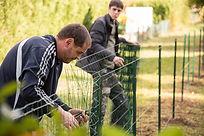 Membres de l'équipe d'intervention de Prox à Uzerche spécialisés dans l'entretien des parcs et des jardins en train de mettre en place une cloture de jardin en grillage de fil de fer sur des piquets en métal avec une pince spécifique.