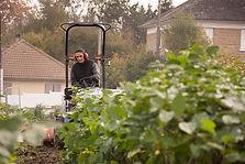 Professionnel des espaces verts en Corrèze, Prox mutitravaux prend en charge le débroussaillage des terrains compliqué grace à un giro broyeur tracté par un mini tracteur tondeuse.