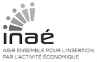 logo-inae.png