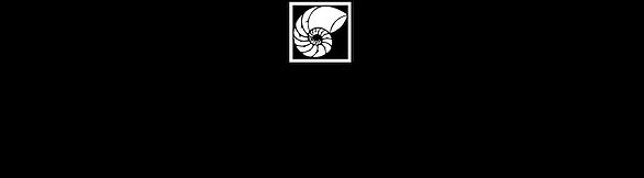 Bay Design Store Logo.png
