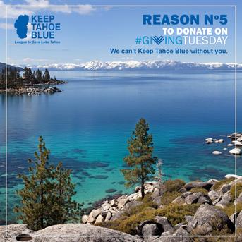tingtang creative Graphic Design Branding Marketing Creative Direction Naples Florida Keep Tahoe Blue Graphic Design Layout 5