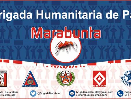 Comunicado Solidaridad BHP Marabunta