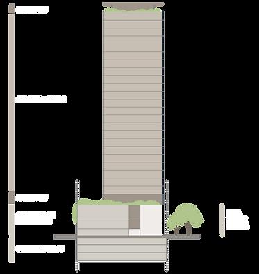 MS_AM_Infografia.png