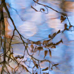 spiegelingen herfst 03