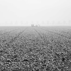Akker in de mist