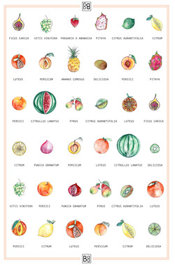 Mixed Fruit & Vegetables