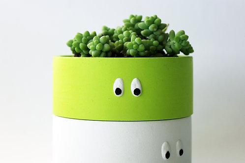 Lime Eye Spy Mini Dish