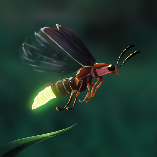 Encyclopedia_Image_Firefly.png