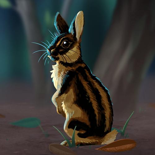 sumatran_striped_rabbit.png