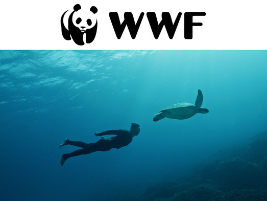 Birthplace featured on WWF Voices