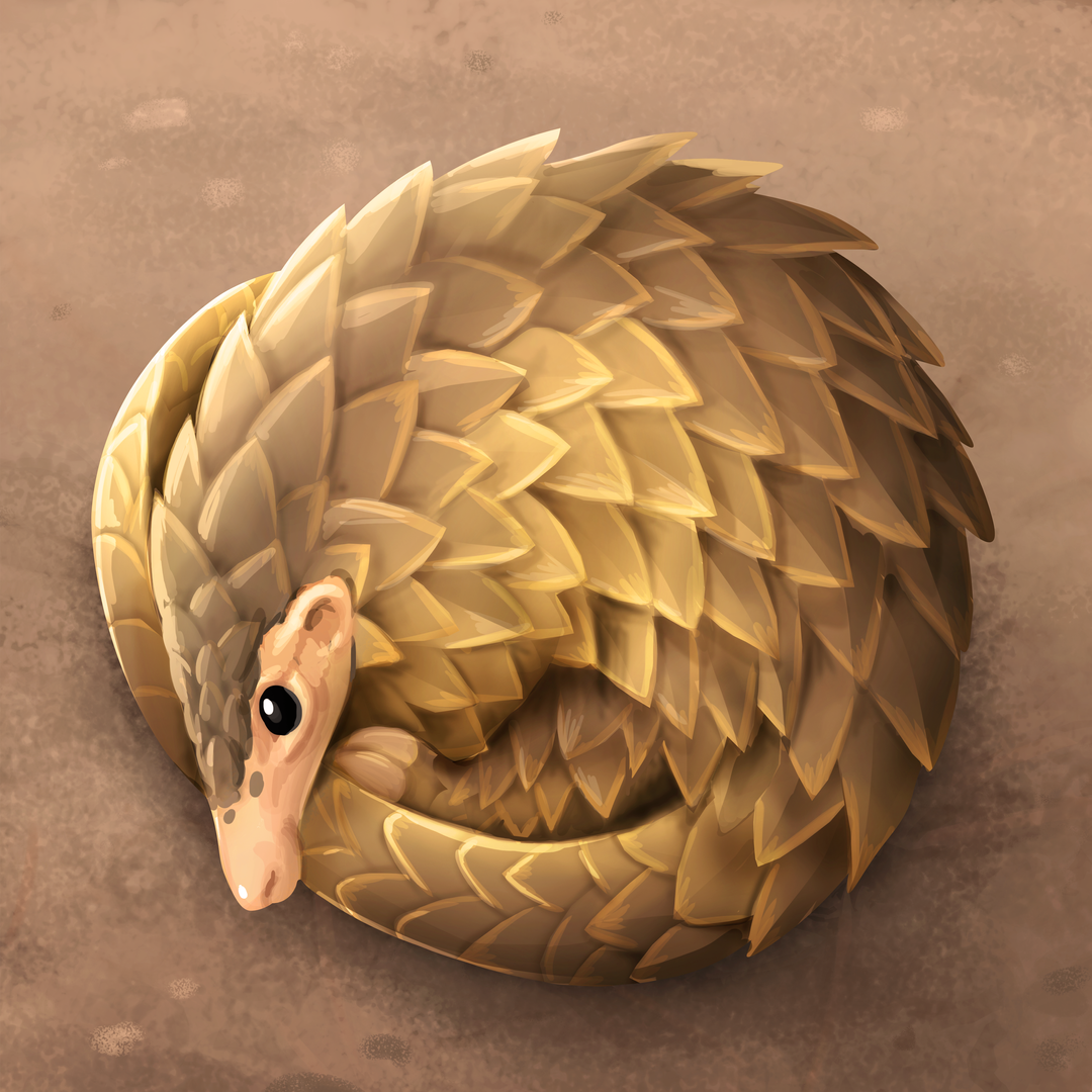 Encyclopedia_Image__Pangolin.png