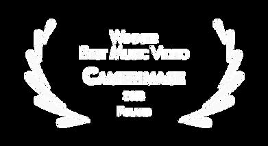 camerimage_edited.png