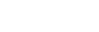Logo GRAACC300.png