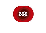 edp300.png