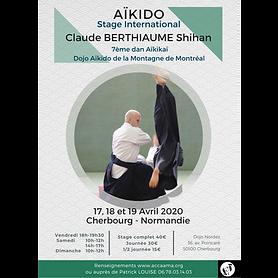 Stage International Aïkido
