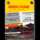 Stage AÏkido Fabrice Cast