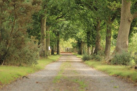 Approach to Woodman's Farm