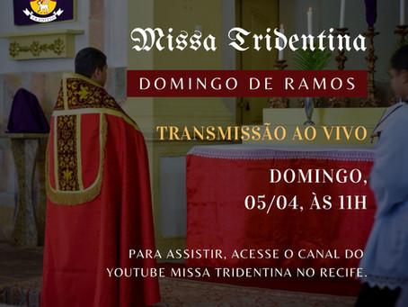 Transmissão da Missa do Domingo de Ramos 05/04/2020