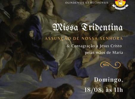 AVISO: Festa da Assunção de Nossa Senhora 2019