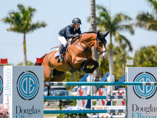 WEF 2019 - Results